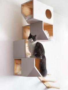 Catissa 4 storey cat