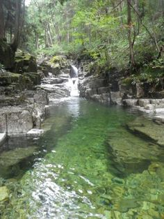 木曽川水系 大滝川 田立の滝