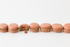 macarons made by macaronmanufaktur in perchtoldsdorf. shot by wolfgang rada food photographer www.wolfgangrada.com Macarons, Food Photography, Sweets, Stud Earrings, Jewelry, Jewlery, Gummi Candy, Jewerly, Candy