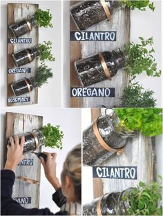 I love this idea for my kitchen window. but mount them on the cabinets facing me