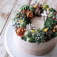 'Succulent Cakes' Turn Prickly Plants into Delicious Desserts That Look Too Good To Eat Köstliche Desserts, Delicious Desserts, Bolo Floral, Cactus Cake, Pear Cake, Succulent Cakes, Succulent Wreath, Baking Classes, Cake Decorating Techniques
