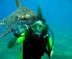 Shark Photobomb