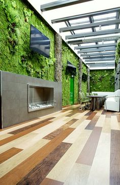 Nature Art, Wall Frames with Preserved Plants, Vertical Gardens   Photo Gallery