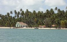 Praia dos Carneiros - A 24 km de Porto de Galinhas em Pernambuco, Brasil - Fotografia: Juliana Bianchi