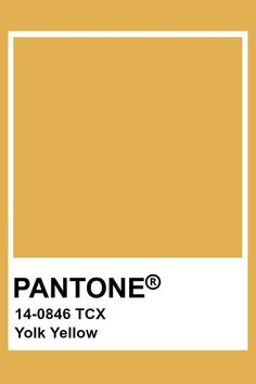 Pantone Swatches, Color Swatches, Pantone Colour Palettes, Pantone Color, Colour Pallete, Colour Schemes, Yellow Pantone, Color Names, Color Theory