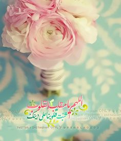 "Pearla on Twitter: ""اللهم يامقلب القلوب ثبت قلوبنا على دينك ㅤ ㅤ #الوتر #غرد_بصورة #بوح #قيام #ليل #البحرين #Bahrain #السعودية #الامارات https://t.co/ntsuXASzF9"""