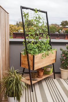 Sleek and Stylish Cedar Planter Box with Built-In Trellis (not mobile but could be cute, will just take a while to grow but the trellis)