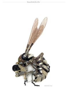 Insect made of repurposed metal parts by Edouard Martinet