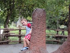 Photo of the Week : Climbing on the termite mounds at the Fort Worth Zoo, Texas