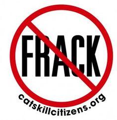 Catskill-Citizens-for-Safe-Energy-291x300.jpg (291×300)