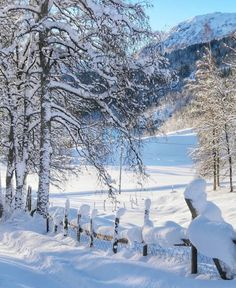 I Love Winter, Winter Art, Winter Snow, Winter Time, Snow Pictures, Pretty Pictures, Winter Scenery, Winter Magic, Snowy Day
