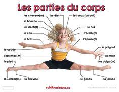 Lexique du corps et les mouvements.