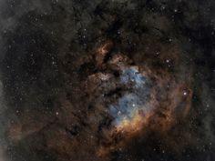 NGC 7822 in Cepheus --- May 23 --- Image Credit & Copyright: César Blanco González