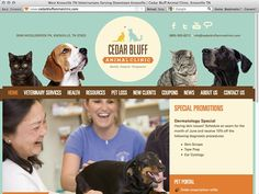 Another fine example of a well done pet web site design. This time for an animal clinic. Fun, yet also highly professional.