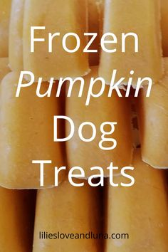 These frozen peanut butter and pumpkin dog treats can be made in just a few minutes plus freezing time.