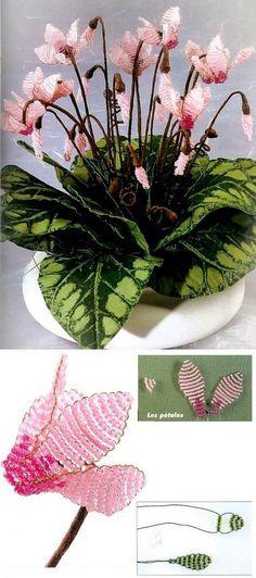 Цикламен / Цветы / Biserok.org