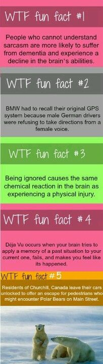 Being ignored causes the same chemical reaction in the brain as physical injury. #facts #amazingfacts #weirdfacts