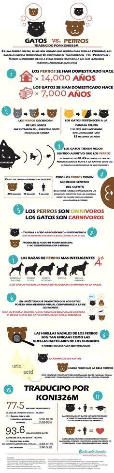 ¡Interesante #infografía! #mascotas #pets #perros #gatos #doglovers #catlovers