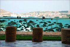 Dynamic fence... a 50 meter long aquarium surrounds this Turkish man private house, with thousands of fish and octopuses.    10    Email There's this house in Turkey that has a 50 meter long (165 feet) fence filled with thousands of fish and you can also see some octopuses in there. As far as I hear, this was a pretty expensive deal, and it just might be a little too extravagant. I think it's safe to say that this whole deal is a bit fishy.