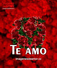 Rosas Gif, Flower Art, Beauty Women, You And I, Love, Charro, Nostalgia, Angeles, Mac