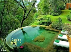 An infinity pool in the forest Please Follow: +Wonderful World