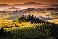 Chianti, área famosa por seus vinhos