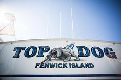 #TRANSOM: Top Dog, Fenwick Island #Boat #Transom #BoatTransom  TRANSOM #TECHNIQUE: #CustomGraphics    #BOAT #BUILDER #BoatBuilder: None