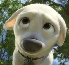Quiz: How Many Disney Animated Classics Have You Seen? Bolt Disney, Disney Art, Disney Movies, Punk Disney, Disney Characters, Bolt Dog, Disney Animated Classics, Disney E Dreamworks, Disney Dogs