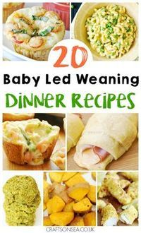 20 Delicious Baby Led Weaning Dinner Ideas Need inspiration quickly? We've got 20 baby led weaning dinner ideas suitable for the whole family and perfect for finger foods too! via Crafts on Sea Weaning Foods, Baby Weaning, Baby Led Weaning First Foods, Baby Led Weaning Lunch Ideas, Baby Led Weaning Cookbook, Fingerfood Baby, Baby Food Recipes, Healthy Recipes, Baby Lead Weaning Recipes