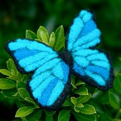 blue morpho needle felted butterfly.