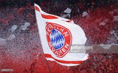 allianz arena fans - Google Search