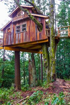 Looks like the treehouse guy built this.