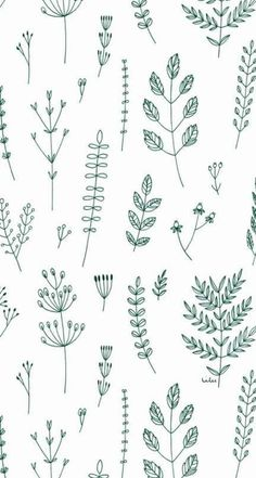 Trendy Plants Wallpaper Pattern Inspiration – Best Garden Plants And Planting Simple Wallpapers, Trendy Wallpaper, Simple Backgrounds, Iphone Wallpaper 4k, Iphone Backgrounds, Pattern Wallpaper Iphone, Wallpaper Backgrounds, Phone Wallpapers, Wallpaper Quotes