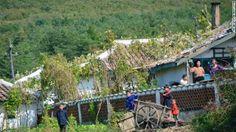 家の外で遊ぶ子どもたち ▼24Nov2013CNN|写真特集:北朝鮮に消された写真 http://www.cnn.co.jp/photo/35039724-4.html #NKorea #North_Korea #DPRK #PRK #Corea_del_Norte #Coree_du_Nord #Nordkorea