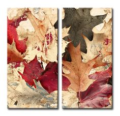 Fall Ink IX 2 Piece Graphic Art on Wrapped Canvas Set