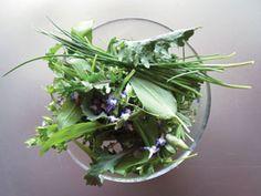 Wild Garlic Salad courtesy of Ravishing Raw