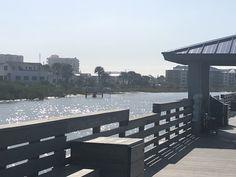 New Smyrna Beach Florida, Florida Beaches