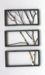 Framed Tree Branches, why am I do fascinated by this?