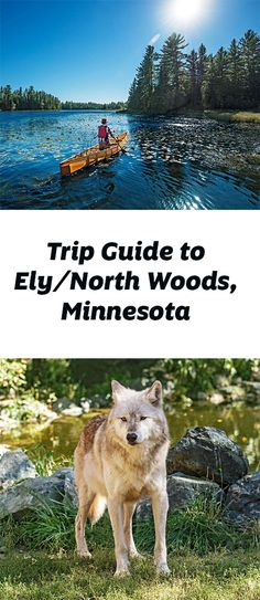 In the million-acre Boundary Waters Canoe Area Wilderness surrounding Ely, terrain and water merge into one vast adventureland. Trip guide:  http://www.midwestliving.com/travel/minnesota/ely/ely-trip-guide/