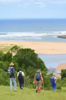 Walk the magnificent beaches and unspoilt environment of the Wild Coast. African Countries, Countries Of The World, Small Hotels, Bucket List Family, Under The Rainbow, Kwazulu Natal, Canoe Trip, Zimbabwe, Rest Of The World