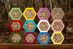 Bee hotel, Insect house, Bumblebee home, Mason bee house, Hotels colorsfull by DILNA HAMMER www.dilnahammer.cz
