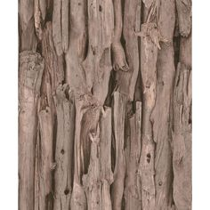 African Queen II 56 sq. ft. Deeply Shaded Brown Wood Log Print Wall Paper