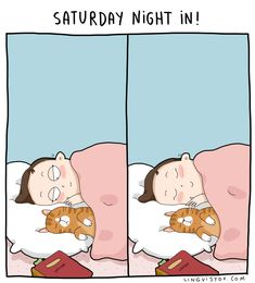 Spending this Saturday night at home, reading books and snuggling in bed with my little cat Iris! Who else is having Saturday in? I Love Cats, Cute Cats, Funny Cats, Crazy Cat Lady, Crazy Cats, Amor Animal, Cat Comics, Funny Comics, Grand Ole Opry