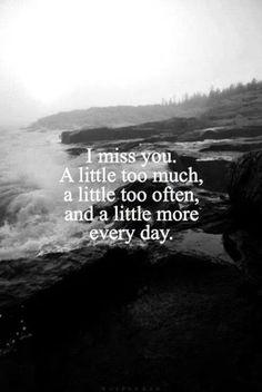 Ik mis je steeds meer. Terwijl mijn verstand zegt dat het zinloos is, zegt mijn gevoel dat het zinvol is.
