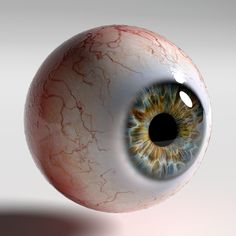 Human eye Photorealistic low-poly model ready for Virtual Reality (VR), Augmented Reality (AR), games and other real-time apps. Photoealistic human eye o. Gorgeous Eyes, Pretty Eyes, Medical Illustration, Illustration Art, Art Illustrations, Drawing Sketches, Art Drawings, Iris Drawing, Sketchbook Drawings
