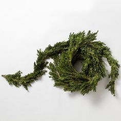 Fresh Boxwood Garland in Garden+Outdoor PLANTS Wreaths+Garlands at Terrain
