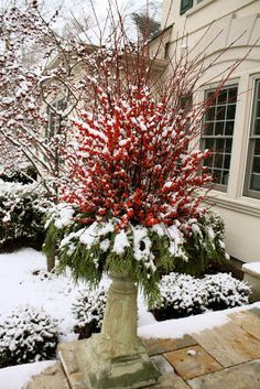 The PURE Gardener, Inc.: Winterberry Containers for the Geneva Christmas House Walk 2009