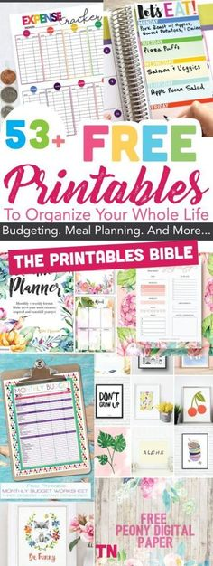 53+ Of The Most Beautiful FREE Printables To Organize Your Whole Life: The Printables BIBLE