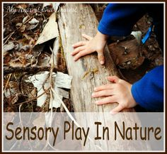 Sensory Play in Nature