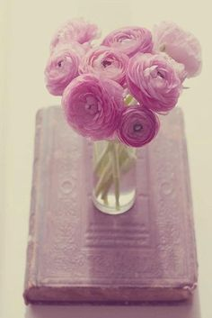 <3 flowers and books ...
